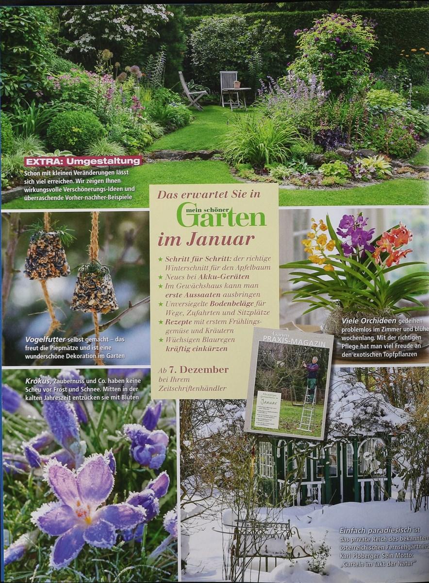 Mein Schöner Garten 122017 Zeitungen Und Zeitschriften Online