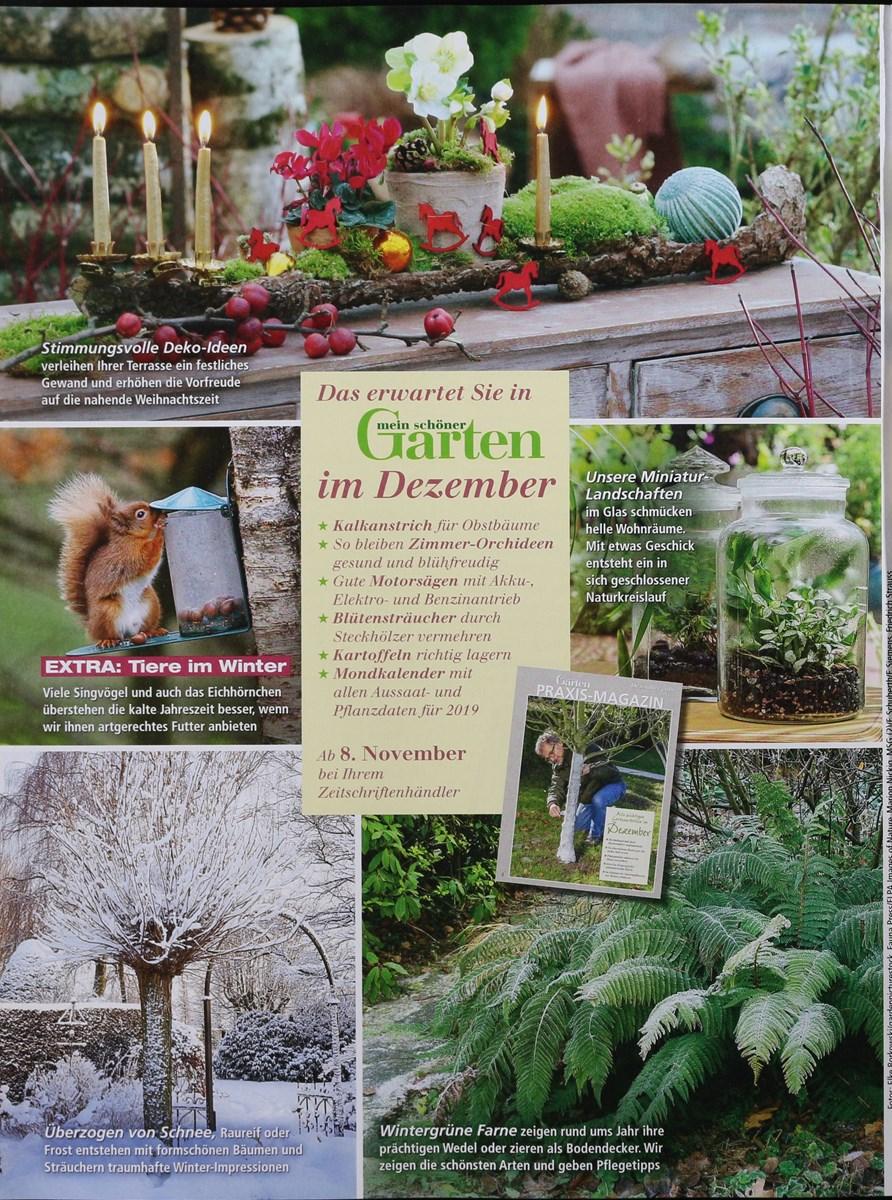Mein Schoner Garten Mondkalender April 2018 Ausreise Info