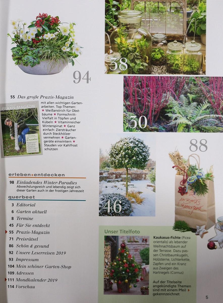 Mein Schöner Garten 122018 Zeitungen Und Zeitschriften Online