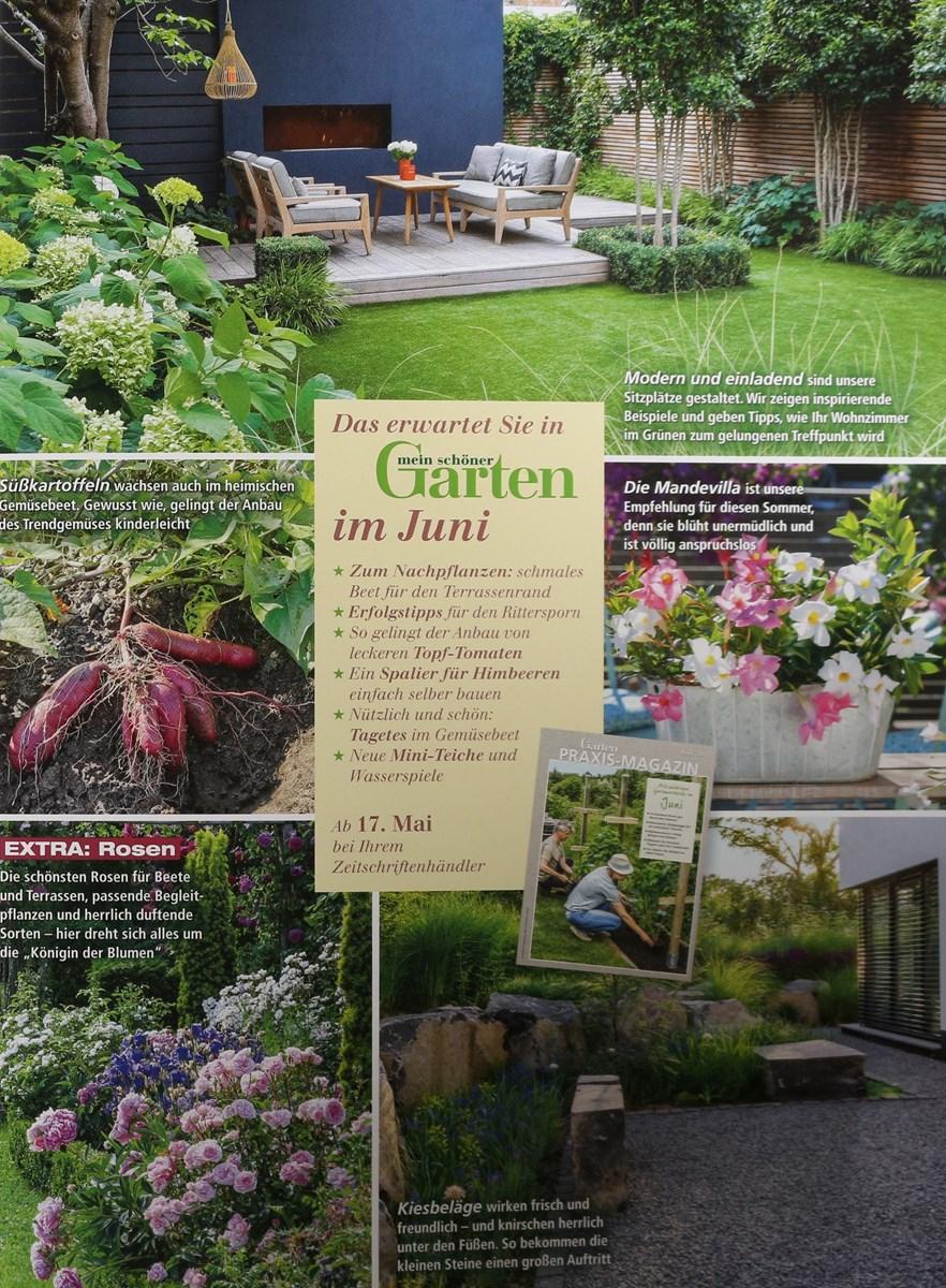 Mein Schöner Garten 52018 Zeitungen Und Zeitschriften Online