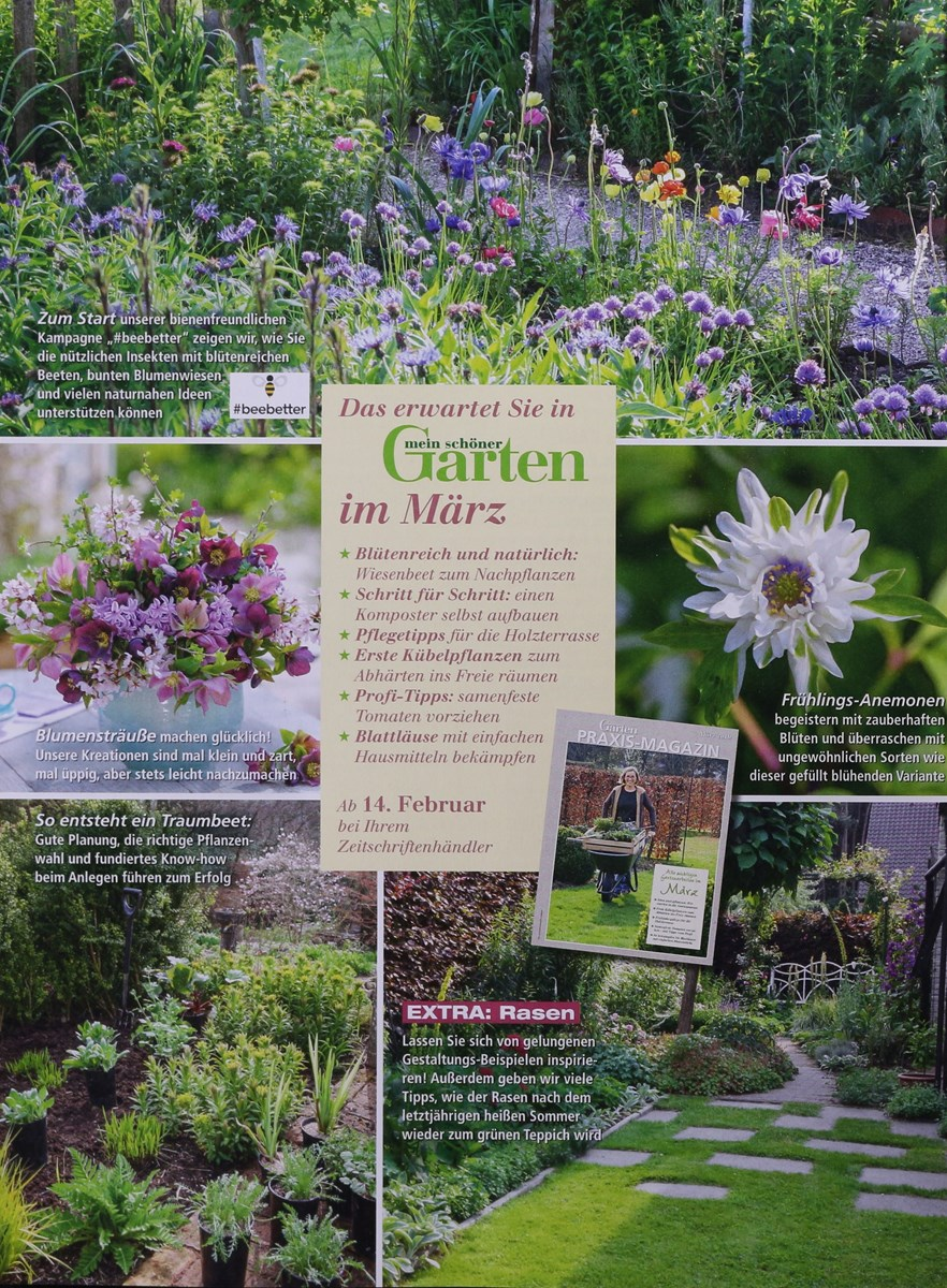 Mein Schöner Garten 22019 Zeitungen Und Zeitschriften Online