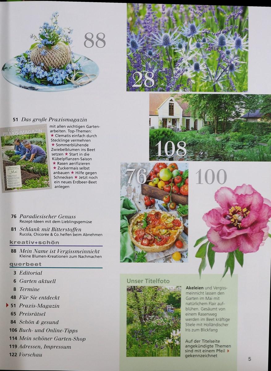 Mein Schöner Garten 52019 Zeitungen Und Zeitschriften Online