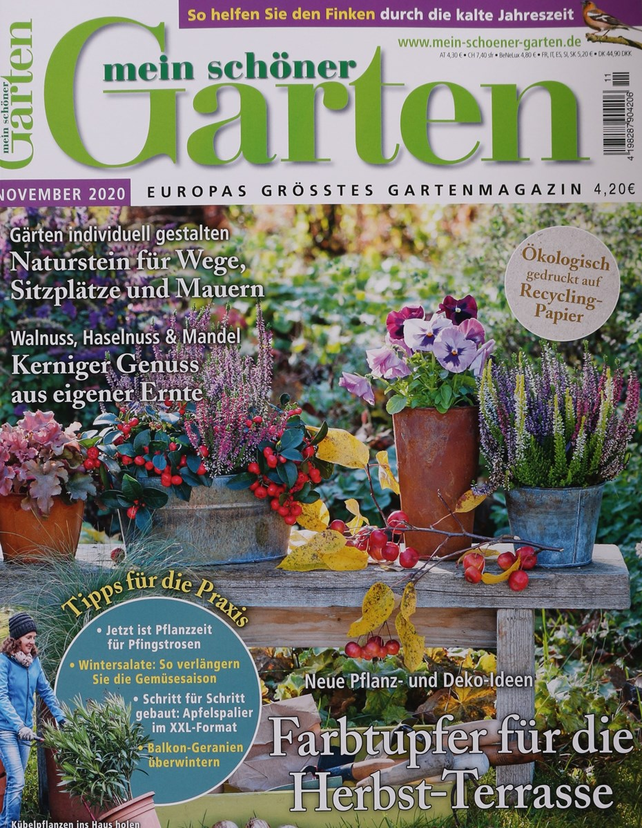 Mein Schoner Garten 11 2020 Zeitungen Und Zeitschriften Online